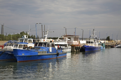 'Baltic Plan': Fisheries MEPs endorse agreement reached with Council in March