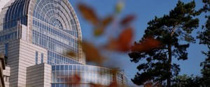 Jaroslaw Walesa MEP on the occasion of Turkey's Journalists Day